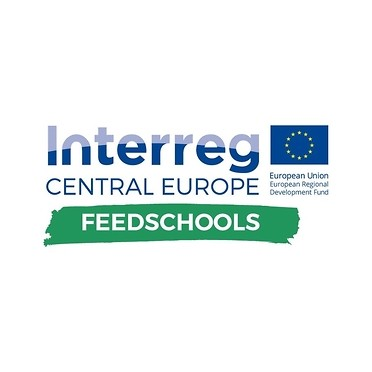 FEEDSCHOOLS  <BR>Financing Environment and Energy Efficiency development in Schools